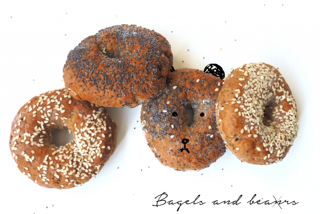bagels and bears